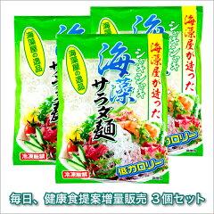 【ポイント10倍】海藻屋が造った!新食感のサラダ!シャキシャキ海藻サラダ麺 500g 3個セット