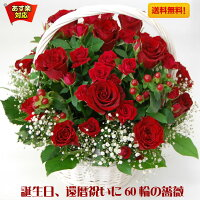 赤バラ60輪