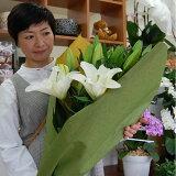 花 ギフト クリスタルブランカ 大輪 百合 花束お供え 還暦祝い 父の日 誕生日 記念日 卒業祝い 入学祝い