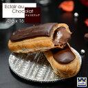 エクレア フランス直輸入 濃厚 チョコエクレア(45g×16個) Pasquier/パスキエ社 [スイーツ/お取り寄せ/母の日/プチギフト/手土産]