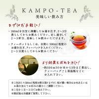 【漢方茶10包入り】選べる5種夏オススメ健康元気お試しティーバッグ漢方温活飲み方効果敬老の日