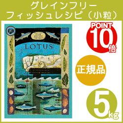 ロータスグレインフリー・フィッシュレシピ/小粒(5kg)【配送区分:W】