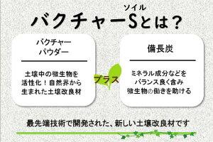 炭バク説明01
