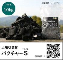 炭バクチャープランター用50g