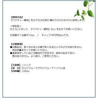 バクチャー植物