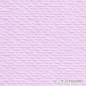 ピンク(CT5025PI)