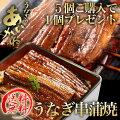 【送料無料】国産うなぎ串蒲焼きタレ・山椒付5個ご購入で1個プレゼント!浜名湖うなぎのあいかね