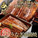 【送料無料】国産うなぎ串蒲焼き タレ・山椒付 浜名湖うなぎのあいかね 5個ご購入で1個プレゼント!