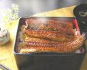 浜名湖うなぎのあいかね白焼2匹と蒲焼2本のセット送料無料 - 浜名湖 うなぎのあいかね