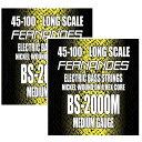 【メール便・送料無料・代引不可】【2セット】FERNANDES フェルナンデス BS-2000M [45-100] ロングスケール ベース弦【smtb-TK】