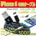iPhone5/iPhone5s/iPhone5c��USB���ť����֥�饤�ȥ˥����֥����֥�å�
