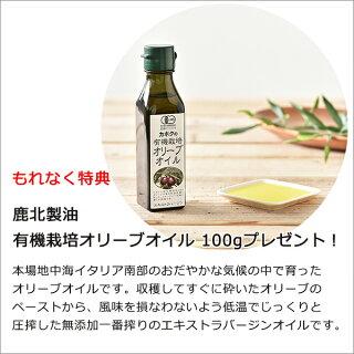 ヘルシーコトコト炊飯調理鍋RHC-1