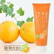 石澤研究所 植物生まれの果汁トリートメント 250g  植物生まれのオレンジトリートメント 【ヘアケア】【スカルプケア】【トリートメント】【ノンシリコン】 【弱酸性】