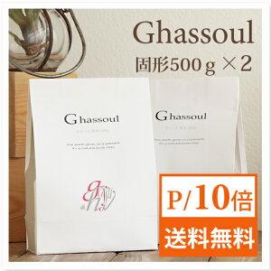ガスール 固形 500g ×2個 ナイアード naiad 【送料無料】 P19Jul15
