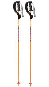 sinano skiing pole [ SL-16 ボーグ付 @11880 ] シナノ  スキーポール 2本組 【 スキー 用】【正規代理店商品】