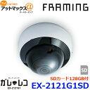 FRAMING フレーミング ガレージレコーダー ガレレコ 防犯カメラ SDカード128GB付 EX-2121G1+SD {EX-2121G1SD[9124]} 1