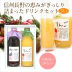 果汁100%ジュース2本セット(りんご・ブルーベリー)1L×2本