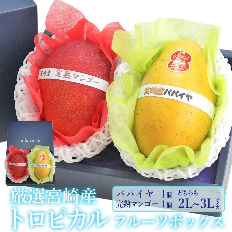 フルーツ・果物, セット・詰め合わせ  1)(2L3L