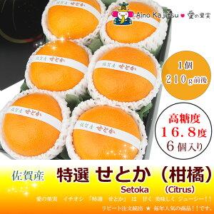 【愛の果実★特選柑橘】せとか(長崎産)6個入
