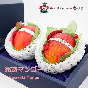 宮崎完熟マンゴー(4Lサイズ・2個セット)(糖度:13度以上)11,000円