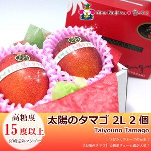 宮崎完熟マンゴー(2Lサイズ・2個セット)(糖度:15度以上)10000円