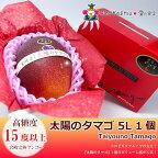 太陽のタマゴ宮崎完熟マンゴー(5L特大サイズ・1個セット)(糖度:15度以上)9500円