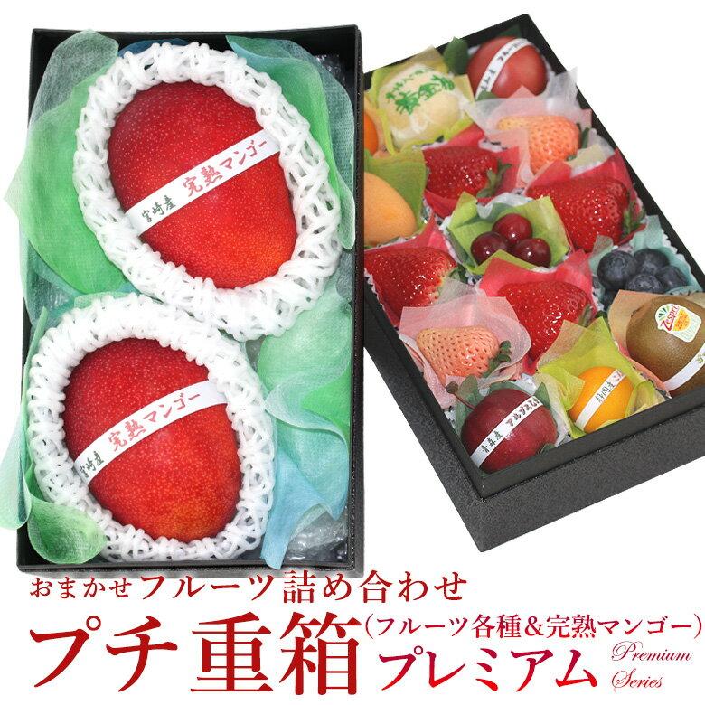 フルーツ・果物, セット・詰め合わせ  FPJ-915 (2L3L)2
