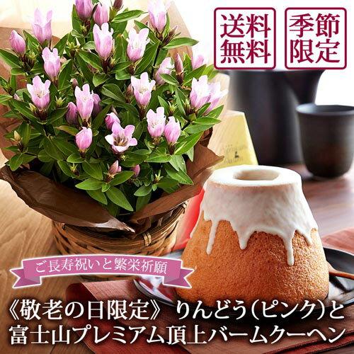 りんどう・富士山バームセット