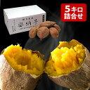 甘熟 安納芋(あんのういも) 約5kg S?M寸 鹿児島県種子島産 熟成貯蔵 安納紅芋 送料無料