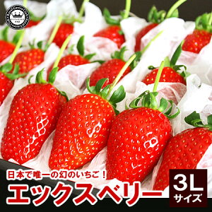 X(エックス)ベリーいちご(苺) 福島県産 3Lサイズ 18粒詰め(いちご イチゴ 苺 フルー…