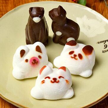 まとめ買い Latte マシュマロ ラテマル3個 ねこ チョコ 2個 動物さんスイーツ お家の箱 10箱セット 送料無料