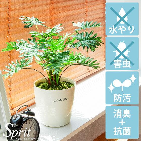 光触媒 人工観葉植物 SPRIT〔スプリット〕