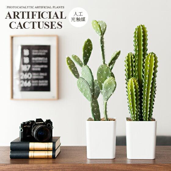 光触媒人工植物 多肉植物 サボテン 観葉植物 グリーン  人工多肉植物 ARTIFICIAL CACTUSES〔アーティフィシャル カクタシーズ〕 西海岸