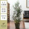 人工観葉植物 Olive tree Grass Bucket(オリーブツリーグラスバスケット)