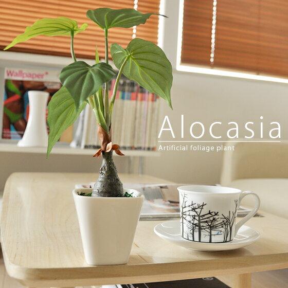 光触媒 人工観葉植物 観葉植物 アロカシア 卓上 造花 消臭 抗菌 卓上観葉植物 水やり不要 人工植物 かわいい 光触媒人工観葉植物アロカシア グリーン