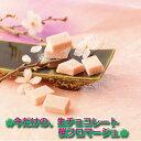 期間限定販売 ロイズ 生チョコレート 桜フロマージュ