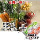 市場より直送!!野菜セット デラックス飯坂温泉ラジウム玉子付き野菜 新鮮 卵 温泉卵 お買い得 セット