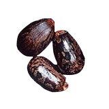 (生活の木)キャリアオイルカスターオイル(ひまし油) 70ml