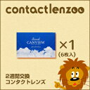 2wcanview_01