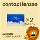 2wcanview_02