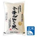 【5kg 玄米】令和2年産