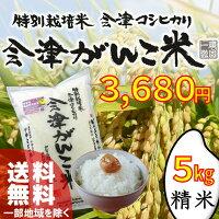 福島県産・会津産コシヒカリ会津がんこ米5kg送料無料