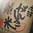 【送料無料】【あす楽】【特別栽培米】新米 28年産米(玄米) 会津がんこ米(会津産コシヒカリ) 2Kg