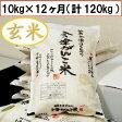 【送料無料】【特別栽培米】28年産米 頒布会(玄米)会津がんこ米(会津産コシヒカリ)10kg(5kg×2)×12ヶ月