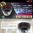 【送料無料】動体を検知し記録する防犯カメラ LUKAS LK-790<あ>【マラソン201611_送料込み】