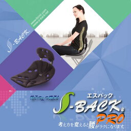 【送料無料】腰ラクラク S-BACK プロ 腰椎サポートクッションシート (レギュラーサイズ)