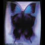 【オリコン加盟店】通常盤■YEN TOWN BAND CD【MONTAGE】15/12/2発売【楽ギフ_包装選択】