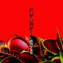 【オリコン加盟店】初回盤B[取]★DVD付■筋肉少女帯 CD+DVD【Future!】17/10/25発売【楽ギフ_包装選択】