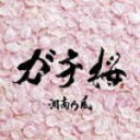 ※初回入荷分■湘南乃風 CD【ガチ桜】10/2/10発売