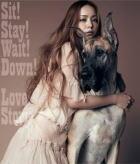 【オリコン加盟店】■安室奈美恵 CD【Sit!Stay!Wait!Down! / Love Story】11/12/7発売【楽ギフ_包装選択】